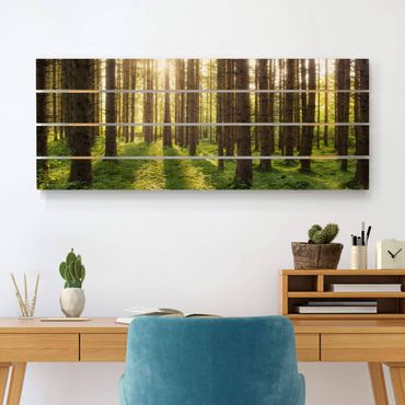 Holzbild - Sonnenstrahlen in grünem Wald - Querformat 2:5