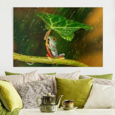 Leinwandbild - Ein Frosch im Regen - Querformat 2:3