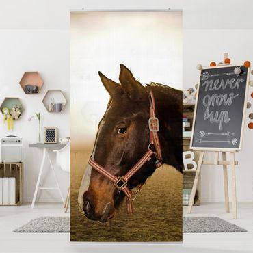 Raumteiler Kinderzimmer - Early Horse 250x120cm