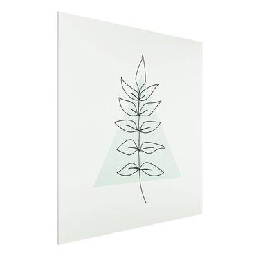 Forex Fine Art Print - Zweig Geometrie Dreieck Line Art - Quadrat 1:1