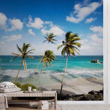 Metallic Tapete  - Beach of Barbados