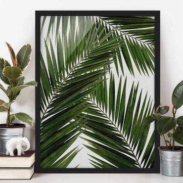 Bild mit Rahmen - Blick durch grüne Palmenblätter - Hochformat