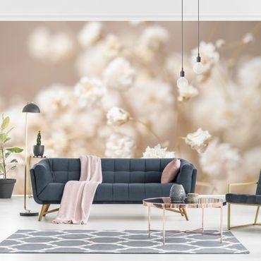 Fototapete - Blütenträume in Creme