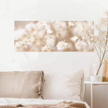 Glasbild - Blütenträume in Creme - Panorama