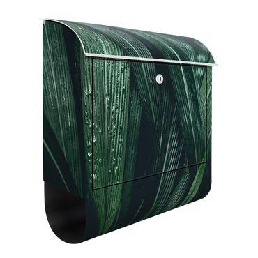 Briefkasten - Grüne Palmenblätter - Briefkasten mit Zeitungsrolle