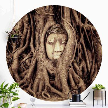 Runde Tapete selbstklebend - Buddha in Ayutthaya von Baumwurzeln gesäumt in Braun
