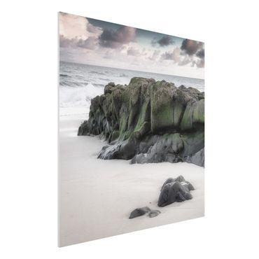 Forex Fine Art Print - Felsen am Strand - Quadrat 1:1