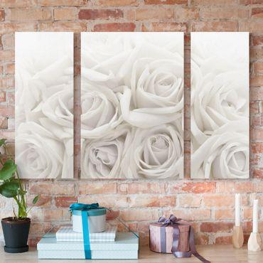 Leinwandbild 3-teilig - Weiße Rosen - Triptychon