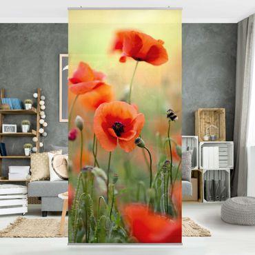 Raumteiler - Roter Sommermohn 250x120cm
