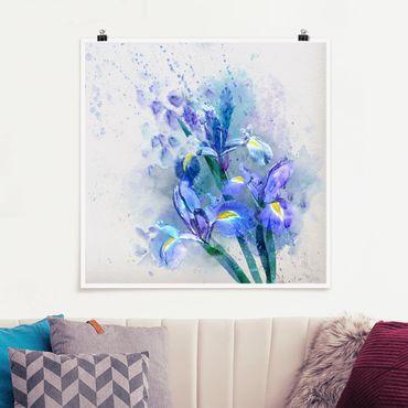 Poster - Aquarell Blumen Iris - Quadrat 1:1
