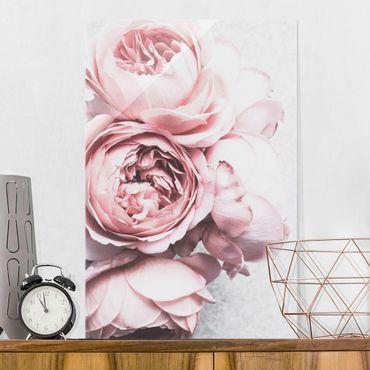Glasbild - Rosa Pfingstrosenblüten Shabby Pastell - Hochformat 3:2