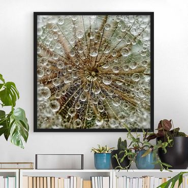 Bild mit Rahmen - Pusteblume im Herbst - Quadrat 1:1