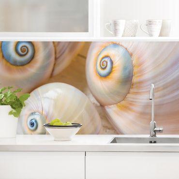 Küchenrückwand - Muscheltrio auf Holz