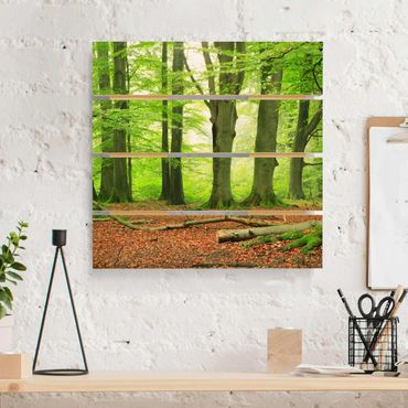 Holzbild - Mighty Beech Trees - Quadrat 1:1