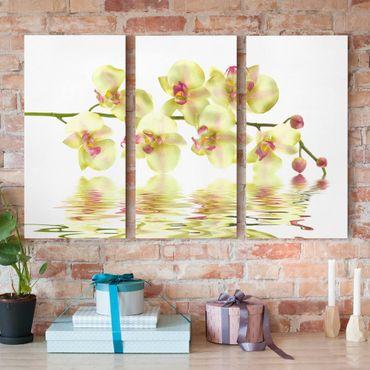 Leinwandbild 3-teilig - Dreamy Orchid Waters - Hoch 1:2