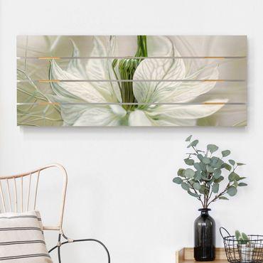 Holzbild - Weiße Nigella - Querformat 2:5