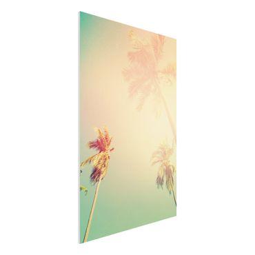 Forex Fine Art Print - Tropische Pflanzen Palmen bei Sonnenuntergang III - Hochformat 3:2