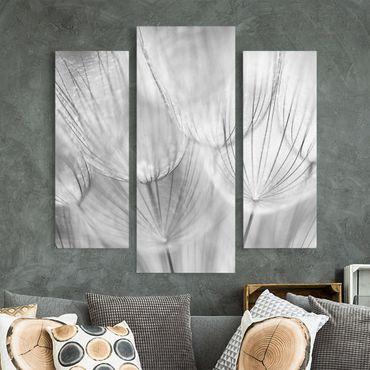 Leinwandbild 3-teilig - Pusteblumen Makroaufnahme in schwarz weiß - Galerie Triptychon