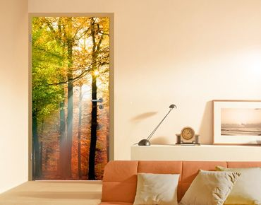 "Türtapete Papiertapete Wald No.54 ""FOREST LIGHTS"" 100x210cm"