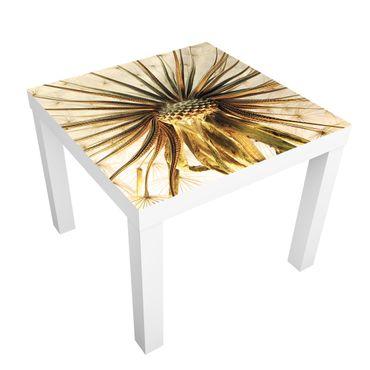 Möbelfolie für IKEA Lack - Klebefolie Dandelion Close Up