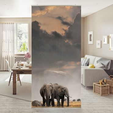 Raumteiler - Elefanten der Savanne 250x120cm