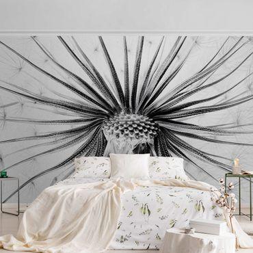 Metallic Tapete  - Dandelion Close Up Schwarz-Weiß