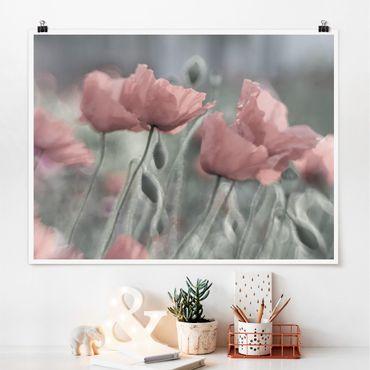 Poster - Malerische Mohnblumen - Querformat 3:4