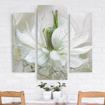 Leinwandbild 3-teilig - Weiße Nigella - Galerie Triptychon