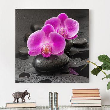 Leinwandbild - Pinke Orchideenblüten auf Steinen mit Tropfen - Quadrat 1:1