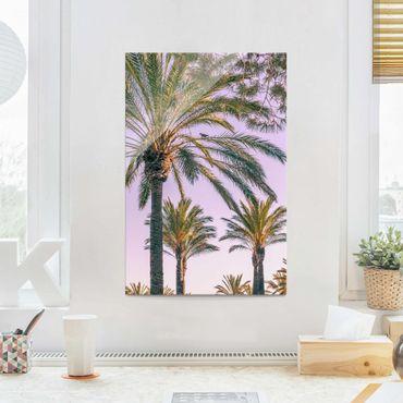 Glasbild - Palmen im Sonnenuntergang - Hochformat 3:2