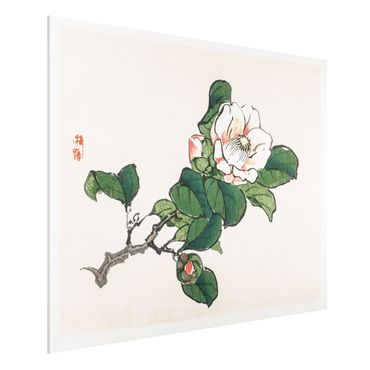Forex Fine Art Print - Asiatische Vintage Zeichnung Apfelblüte - Querformat 3:4