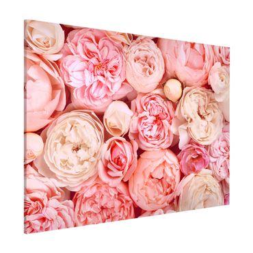 Magnettafel - Rosen Rosé Koralle Shabby - Memoboard Querformat 3:4