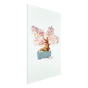 Forex Fine Art Print - Jonas Loose - Bonsai mit Marshmallows - Hochformat 3:2