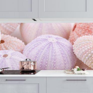 Küchenrückwand - Seeigel in Pastell
