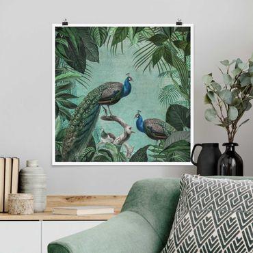 Poster - Shabby Chic Collage - Edler Pfau - Quadrat 1:1