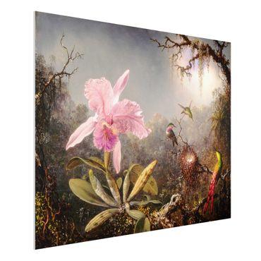 Forex Fine Art Print - Martin Johnson Heade - Orchidee und drei Kolibris - Querformat 3:4