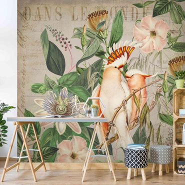 Tapete selbstklebend - Colonial Style Collage - Rosa Kakadu - Fototapete Quadrat