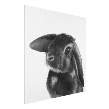 Forex Fine Art Print - Illustration Hase Schwarz Weiß Zeichnung - Quadrat 1:1
