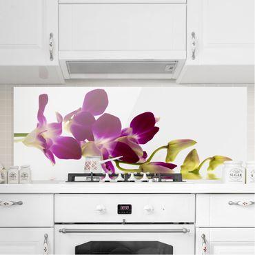 Spritzschutz Glas - Pink Orchid Waters - Panorama - 5:2
