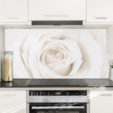 Spritzschutz Glas - Pretty White Rose - Querformat - 2:1