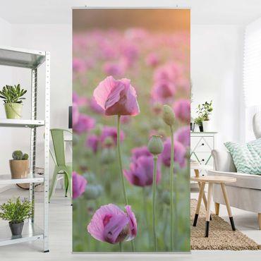 Raumteiler - Violette Schlafmohn Blumenwiese im Frühling 250x120cm