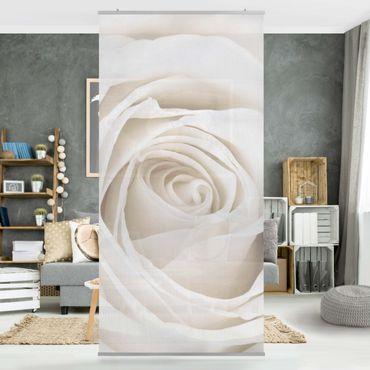 Rosenbild Raumteiler - Pretty White Rose - Blumen Raumtrenner 250x120cm
