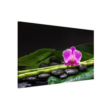 Magnettafel - Grüner Bambus mit Orchideenblüte - Memoboard Querformat 2:3