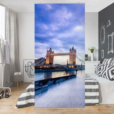 Raumteiler - No.432 Cityhall London 250x120cm