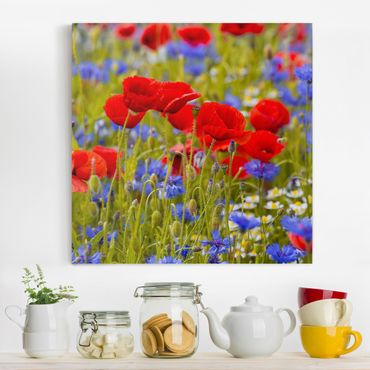 Leinwandbild - Sommerwiese mit Mohn und Kornblumen - Quadrat 1:1