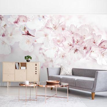 Fototapete - Ein Kirschblütenhauch