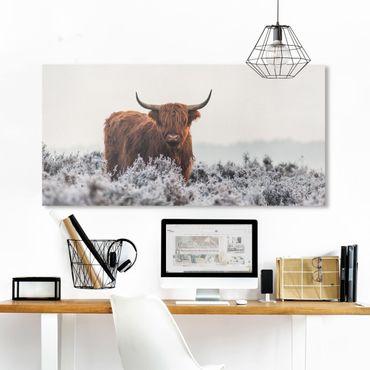 Leinwandbild - Bison in den Highlands - Querformat 1:2