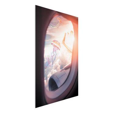 Forex Fine Art Print - Jonas Loose - Flugzeug mit Quallen - Hochformat 3:2