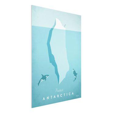 Forex Fine Art Print - Reiseposter - Antarktis - Hochformat 4:3