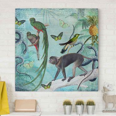 Leinwandbild - Colonial Style Collage - Äffchen und Paradiesvögel - Quadrat 1:1
